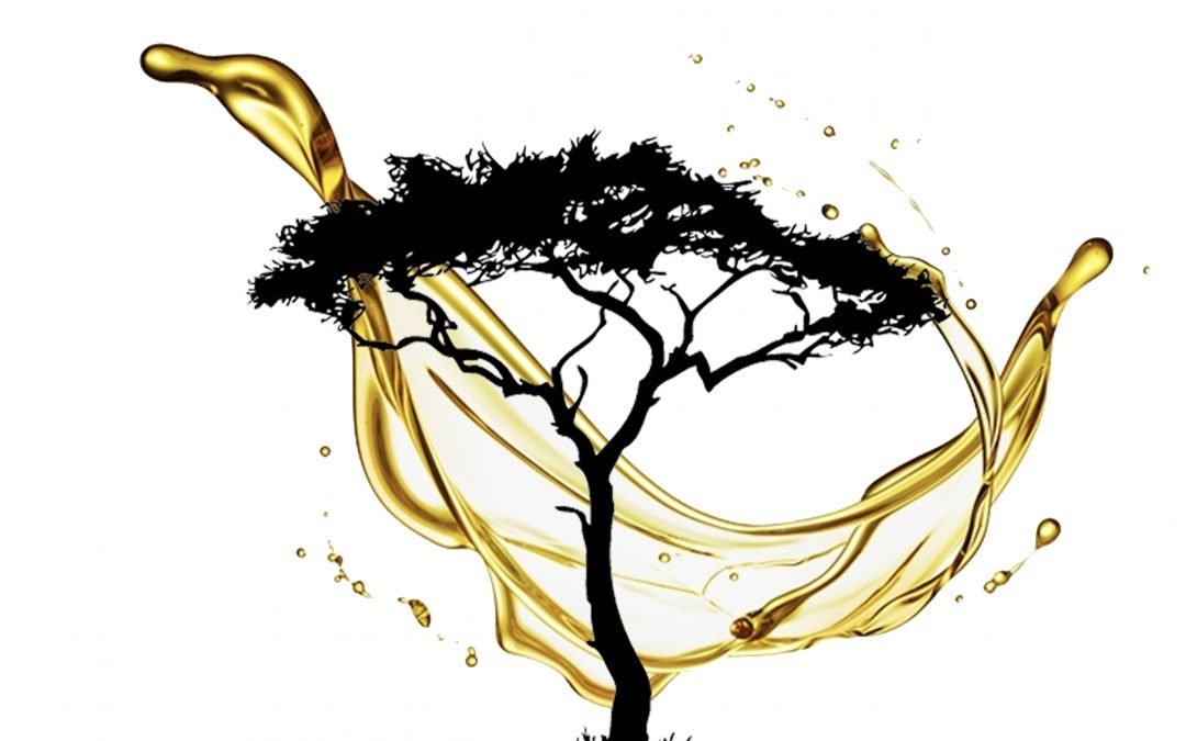Marula Oil Is Essentially the Gatekeeper For Skin's Collagen and Elastin Reserves